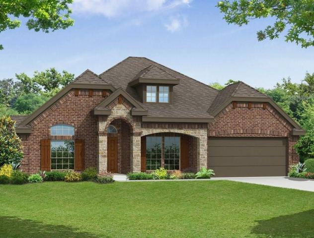 14461 Shady Grove Lane, Frisco, TX 75035 (MLS #14029740) :: Lynn Wilson with Keller Williams DFW/Southlake