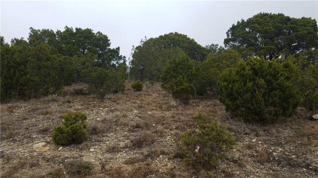 2318 Woodview Trail, Granbury, TX 76048 (MLS #14030556) :: The Chad Smith Team