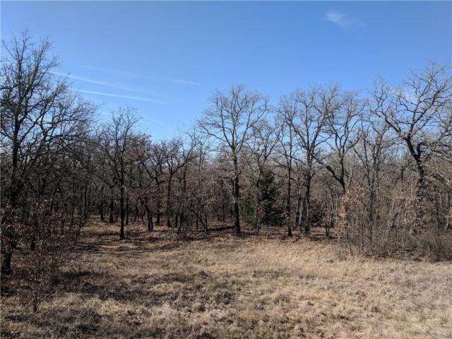 TBD Pheasant Run, Sunset, TX 76270 (MLS #14030572) :: Frankie Arthur Real Estate