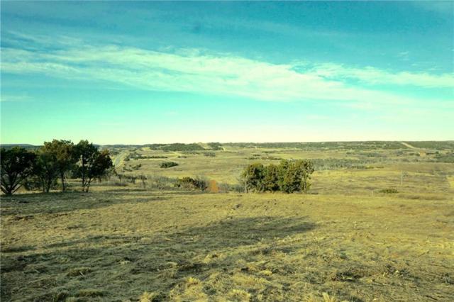1030 Raven Circle, Possum Kingdom Lake, TX 76449 (MLS #14032208) :: Robinson Clay Team