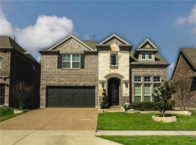 14221 Sparrow Hill Drive, Little Elm, TX 75068 (MLS #14032989) :: RE/MAX Landmark