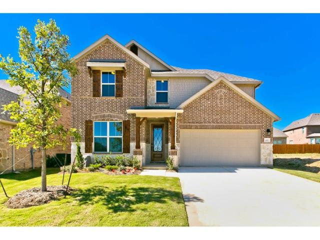 3400 Knoll Pines Road, Denton, TX 76208 (MLS #14033257) :: Real Estate By Design
