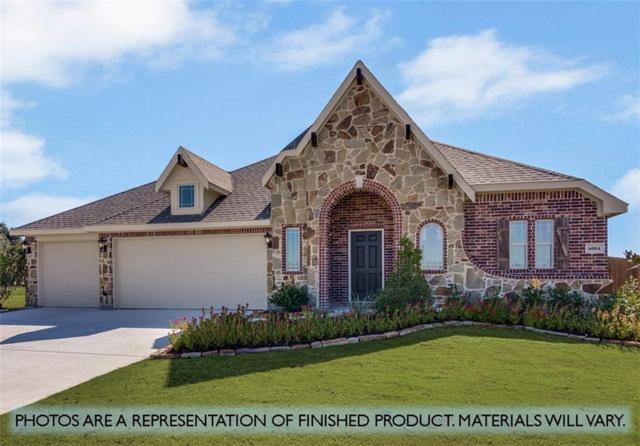 1636 Yellowthroat Drive, Little Elm, TX 75068 (MLS #14033414) :: RE/MAX Town & Country