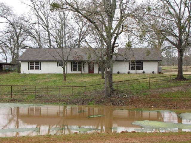 20485 County Road 2162, Troup, TX 75789 (MLS #14033487) :: RE/MAX Town & Country