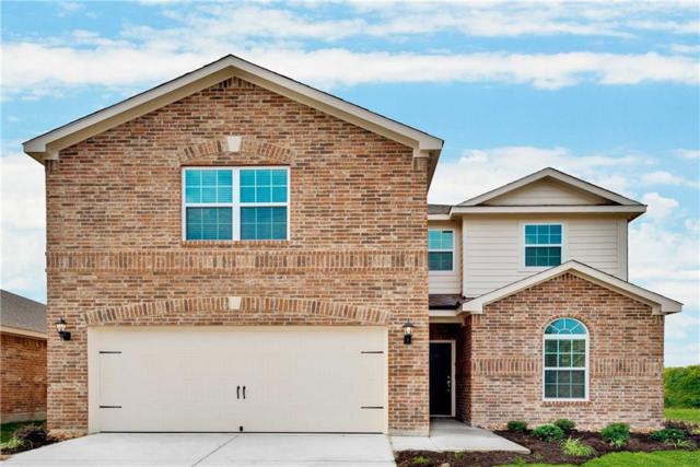 1585 Twin Hills Way, Princeton, TX 75407 (MLS #14033607) :: The Good Home Team
