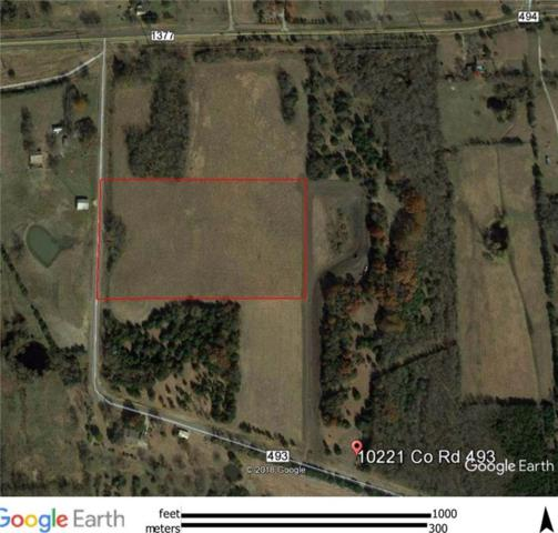 10221 County Rd 493, Princeton, TX 75407 (MLS #14033910) :: Robinson Clay Team