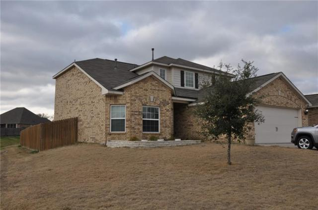 3029 Marble Falls Drive, Forney, TX 75126 (MLS #14034047) :: Baldree Home Team