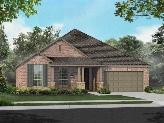 1644 Frankford Drive, Forney, TX 75126 (MLS #14034437) :: RE/MAX Town & Country