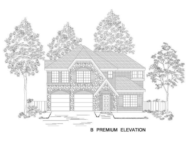 1112 Nannyberry Drive, Little Elm, TX 75068 (MLS #14034910) :: RE/MAX Landmark