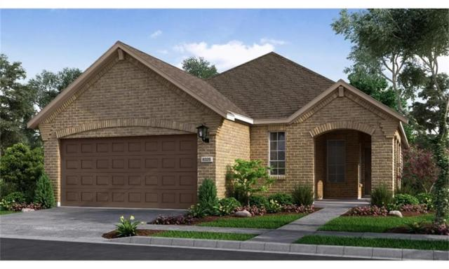 3017 Sunnyside Drive, Celina, TX 75009 (MLS #14035651) :: Real Estate By Design