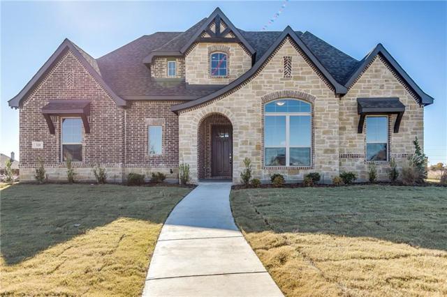 320 Equestrian Drive, Waxahachie, TX 75165 (MLS #14036369) :: Robbins Real Estate Group