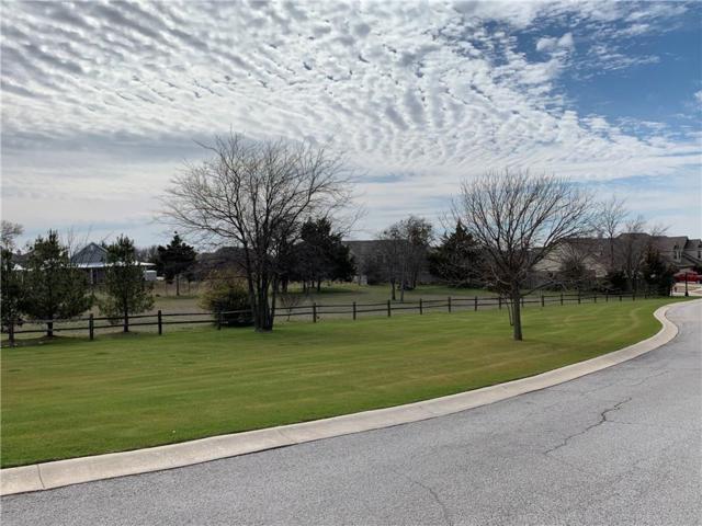1400 Emma Call, Decatur, TX 76234 (MLS #14038152) :: Ann Carr Real Estate