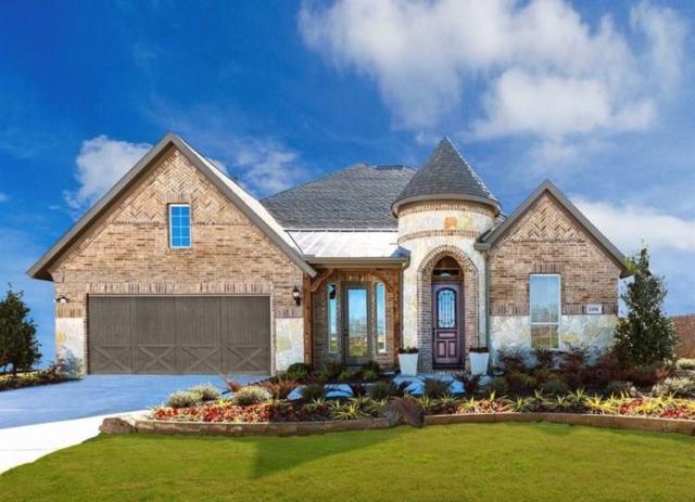 13501 Cortes De Pallas Drive, Little Elm, TX 75068 (MLS #14038764) :: Team Tiller