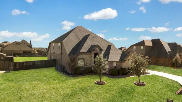 1233 Twisting Meadows Drive, Fort Worth, TX 76052 (MLS #14039019) :: Century 21 Judge Fite Company