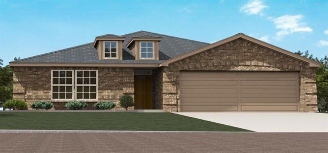 338 Highmeadow, Aubrey, TX 76227 (MLS #14039253) :: Real Estate By Design