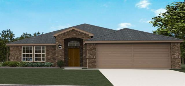 351 Highmeadow, Aubrey, TX 76227 (MLS #14039281) :: Real Estate By Design