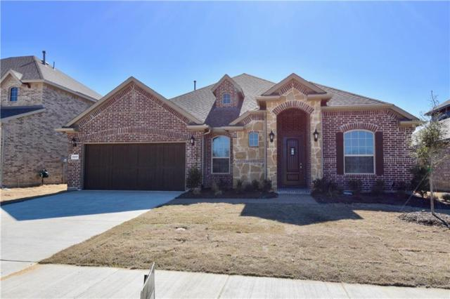 1517 Torrent Drive, Little Elm, TX 75068 (MLS #14039344) :: Century 21 Judge Fite Company