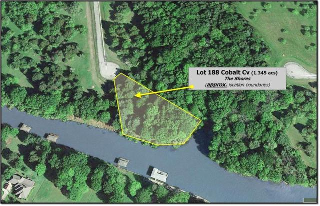 L 188 Cobalt Cove, Corsicana, TX 75109 (MLS #14040142) :: The Daniel Team