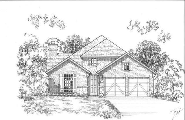 5204 Shallow Pond Drive, Little Elm, TX 76227 (MLS #14040782) :: Robbins Real Estate Group