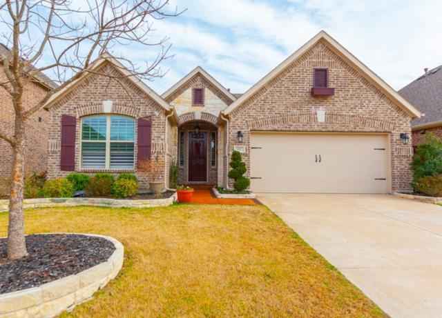 817 Spring Falls Drive, Mckinney, TX 75071 (MLS #14041135) :: Kimberly Davis & Associates