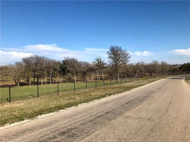 TBD3 Silver Saddle Circle, Weatherford, TX 76087 (MLS #14041334) :: RE/MAX Town & Country