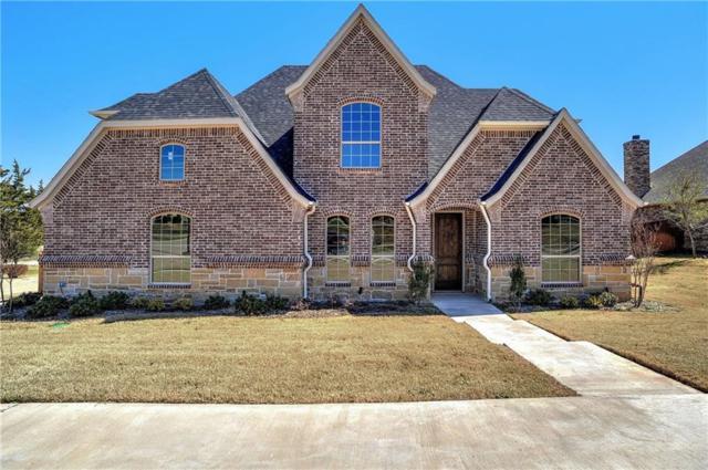 3823 Sumner Court, Sherman, TX 75090 (MLS #14041568) :: Baldree Home Team