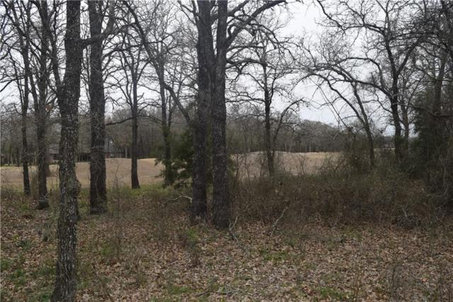 24062 Stonewood Drive, Whitney, TX 76692 (MLS #14041834) :: The Mauelshagen Group