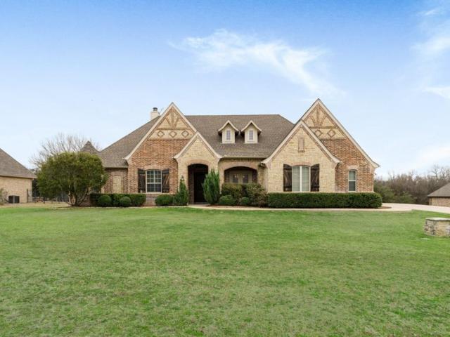 11213 Brady Oaks Court, Fort Worth, TX 76135 (MLS #14041910) :: The Heyl Group at Keller Williams