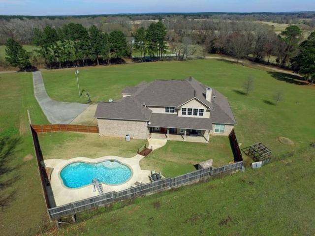 13084 County Road 4224, Frankston, TX 75763 (MLS #14042097) :: Robbins Real Estate Group
