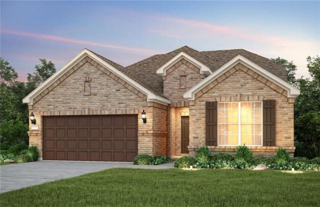 541 Yellowstone Drive, Celina, TX 75009 (MLS #14042560) :: Real Estate By Design