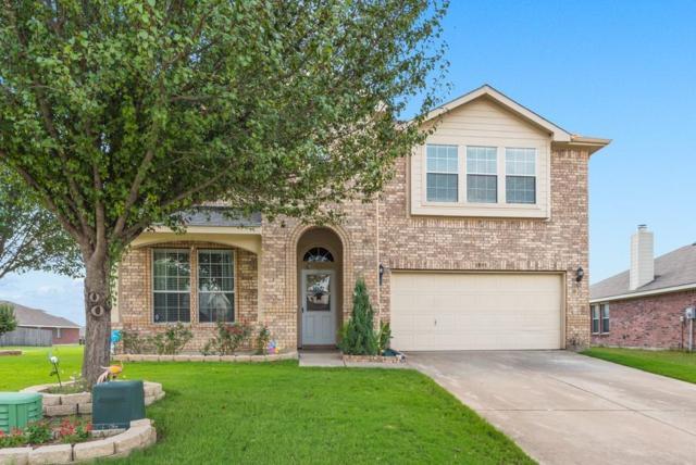 1733 Elm Street, Anna, TX 75409 (MLS #14043413) :: RE/MAX Town & Country
