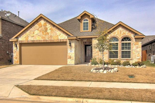 613 Lake Sierra Way, Little Elm, TX 75068 (MLS #14043807) :: The Good Home Team