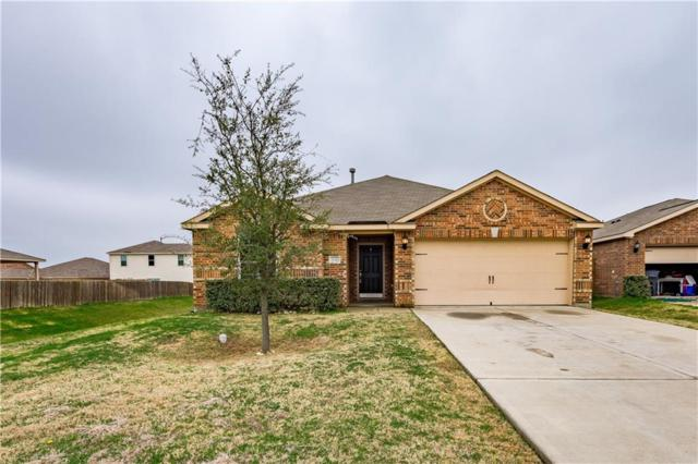 2040 Cone Flower Drive, Forney, TX 75126 (MLS #14043856) :: RE/MAX Town & Country