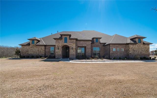 619 Chisholm Ranch Drive, Rockwall, TX 75032 (MLS #14044229) :: Vibrant Real Estate