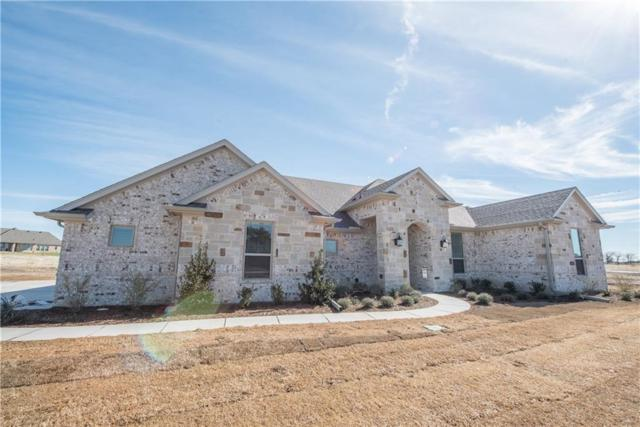 234 Columbia Court, Springtown, TX 76082 (MLS #14044445) :: RE/MAX Town & Country
