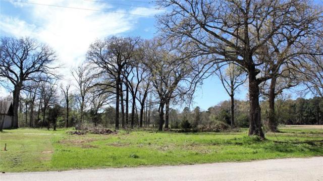 5 Lots Pine Street, Frankston, TX 75763 (MLS #14044459) :: The Rhodes Team