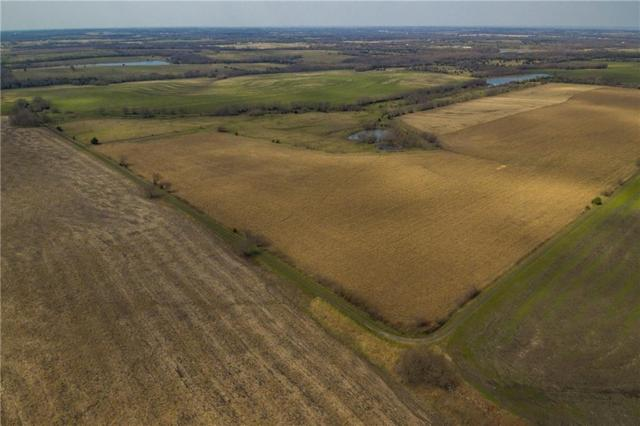 TBD County Rd 4065, Whitewright, TX 75491 (MLS #14044819) :: Baldree Home Team