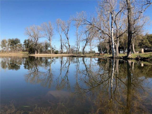 440 Consolation Drive, Brock, TX 76066 (MLS #14045021) :: Robbins Real Estate Group
