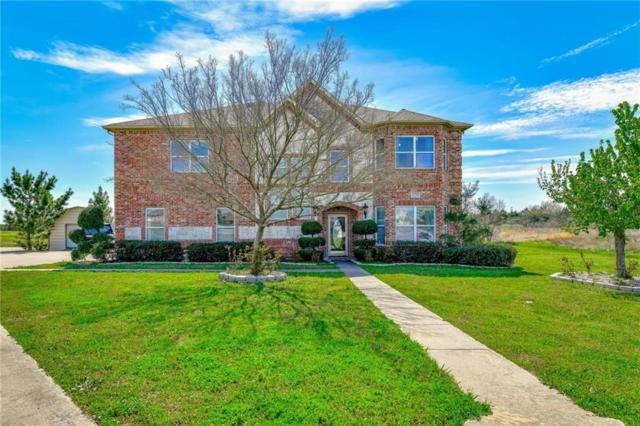 13101 Shadow Brook Court, Terrell, TX 75160 (MLS #14045938) :: RE/MAX Town & Country