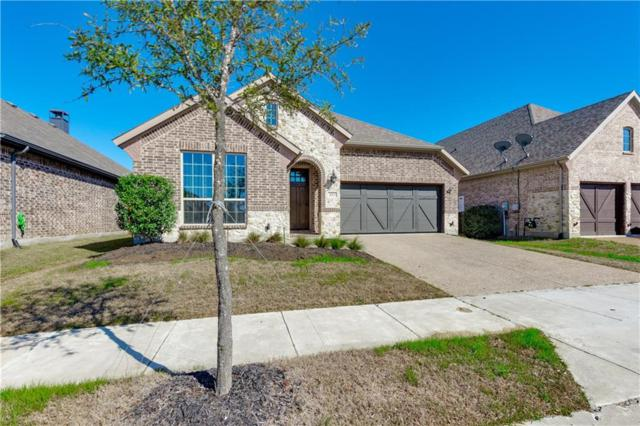 401 Winehart Street, The Colony, TX 75056 (MLS #14046027) :: RE/MAX Town & Country