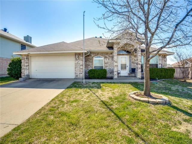 3816 Tulip Tree Drive, Fort Worth, TX 76137 (MLS #14046378) :: Real Estate By Design