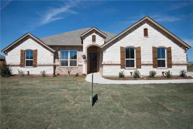 1110 Cliff Swallow Drive, Granbury, TX 76048 (MLS #14046492) :: The Heyl Group at Keller Williams