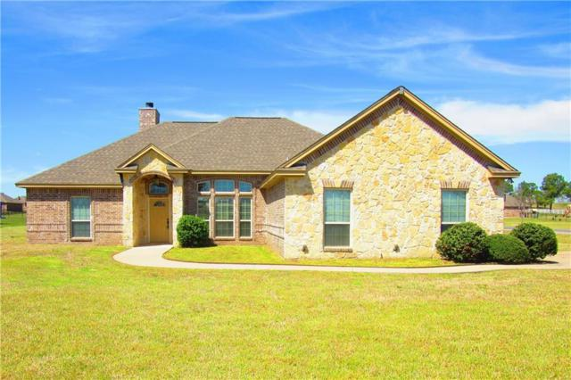 101 Eagles Crest Lane, Weatherford, TX 76087 (MLS #14046582) :: The Mitchell Group