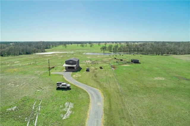 840 County Road 45900, Detroit, TX 75436 (MLS #14046813) :: The Good Home Team