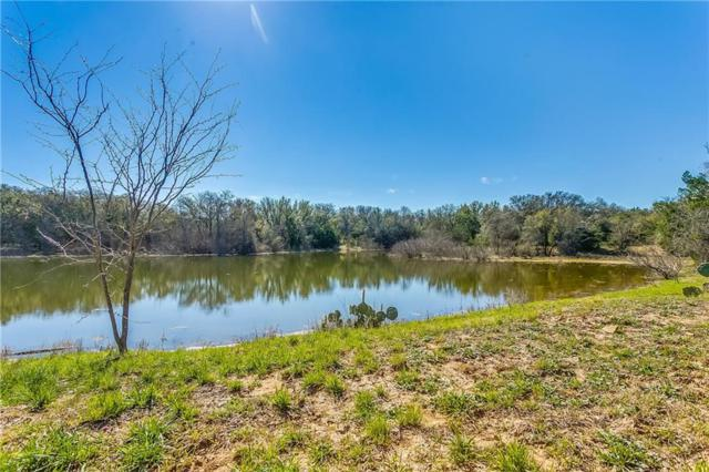 TBD Live Oak Rd, Santo, TX 76472 (MLS #14046981) :: HergGroup Dallas-Fort Worth