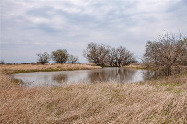 Tbd Blair Road, Waxahachie, TX 75165 (MLS #14047203) :: Frankie Arthur Real Estate