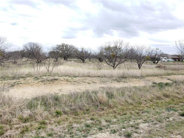 TBD Feather Bay Drive Drive, Brownwood, TX 76801 (MLS #14047238) :: The Heyl Group at Keller Williams
