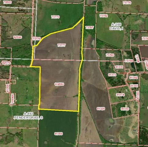 tbd County Road 4235, Bonham, TX 75418 (MLS #14047651) :: Baldree Home Team