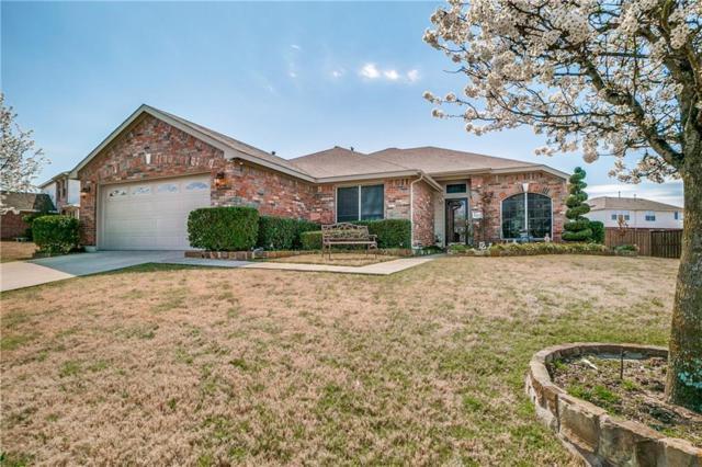 1003 Shenandoah Way, Forney, TX 75126 (MLS #14047783) :: Robbins Real Estate Group