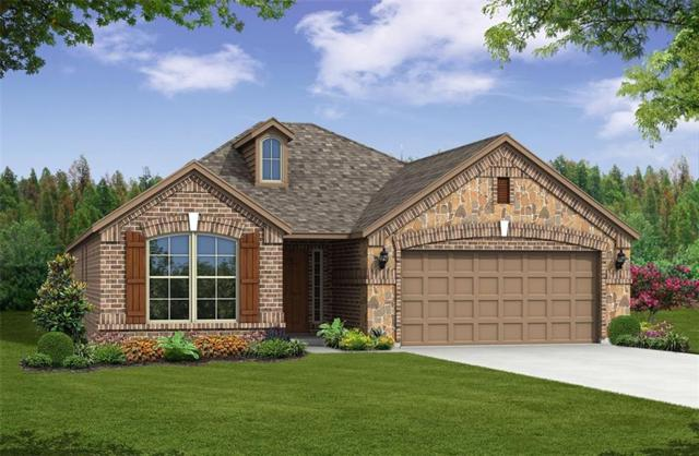 3009 Chestnut Lane, Melissa, TX 75454 (MLS #14048108) :: RE/MAX Town & Country